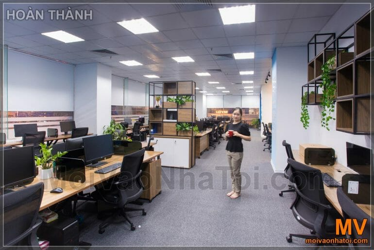 Software company office work
